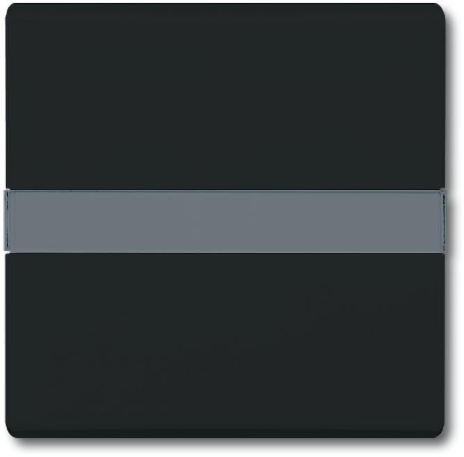 wippe mit beschriftungsfeld anthrazit allwetter 44 busch jaeger 2106 n 35 von busch jaeger. Black Bedroom Furniture Sets. Home Design Ideas