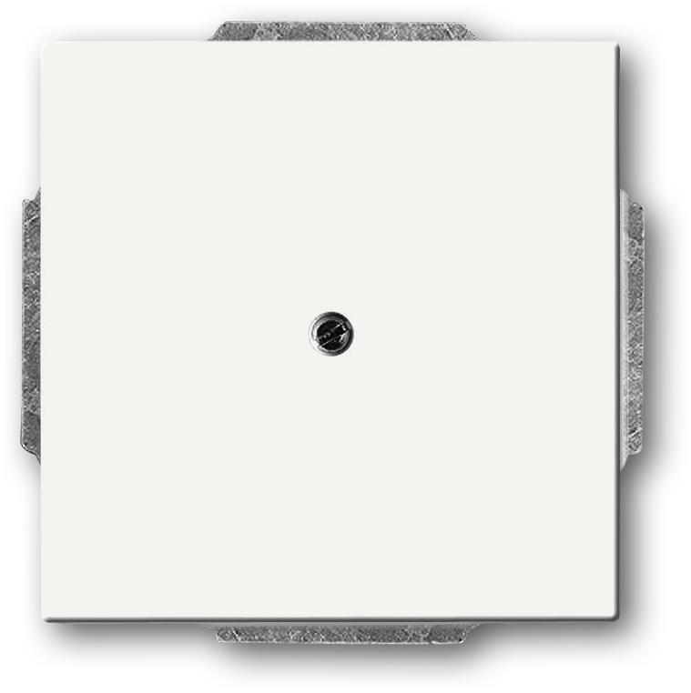 blindzentralscheibe mit tragring studiowei matt future linear busch jaeger 1742 884 von. Black Bedroom Furniture Sets. Home Design Ideas